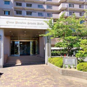 ライオンズマンション貝塚モリスから8階角部屋でました! 区画図