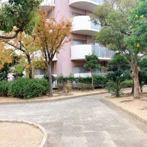 ◆緑も多くてマンションの敷地内は癒されます♪